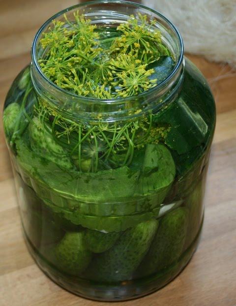 recipe for pickled cucumbers polski ogorki