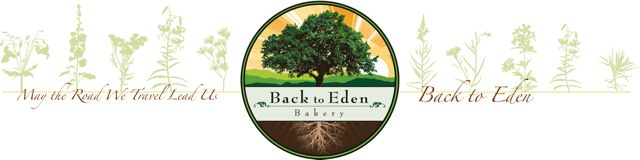 Back to Eden Blog