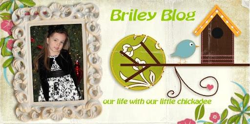 Briley Blog