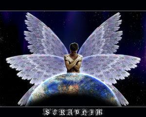 Seraphim_by_TSHansen.jpg?width=400