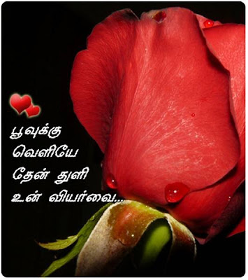 Love Wallpaper In Kavithai : love: tamil kavithai
