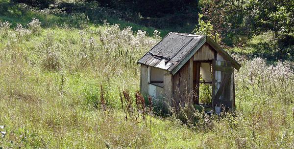 [shed-grange-moor-219.jpg]