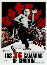 Las 36 cámaras de Shaolin (1978)