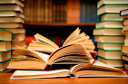 La Biblioteca de David Parra