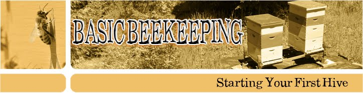 Basic Beekeeping DVD
