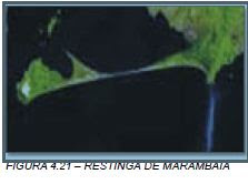 Restinga Marambaia