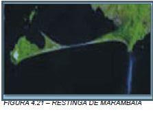Restinga Marambaia