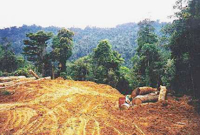 Pencemaran Pembinaan pembinaan infrastrukturPencemaran Pembinaan