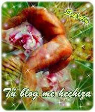 Melo otorga el blog de Mina Carlis