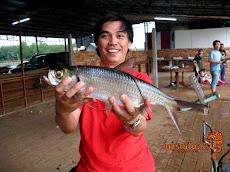 大眼海链纪录鱼