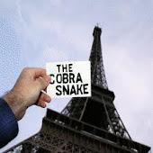 the cobra snake