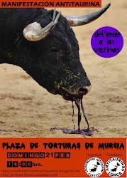 Manifestación Murcia 21feb/2010