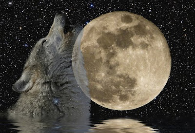 Biggest Brightest Moon of 2009 This Weekend//Full Moon Meditations and Rituals: January 2009's Wolf ...