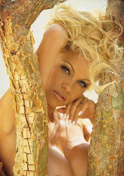 Pamela Anderson Naked Playboy Nude Christmas Interview Pete Price: When I Met Pamela Anderson