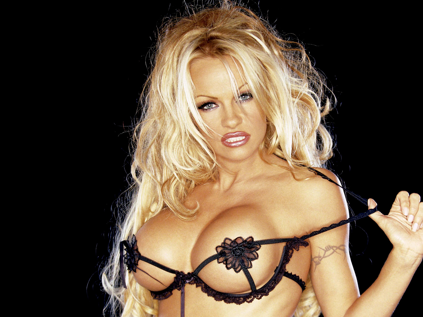 Balls sucked naked hot sex pamela anderson sousa