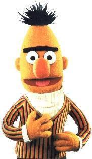 Mat denan bert muppet wiki