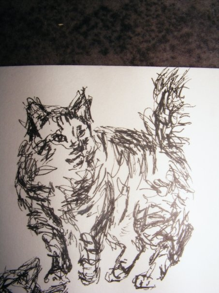 [catsar3]