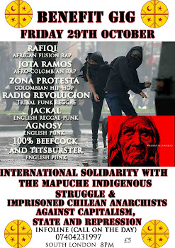 29th October BenefitGig - International Solidarity with the Mapuche Indigenous Struggle