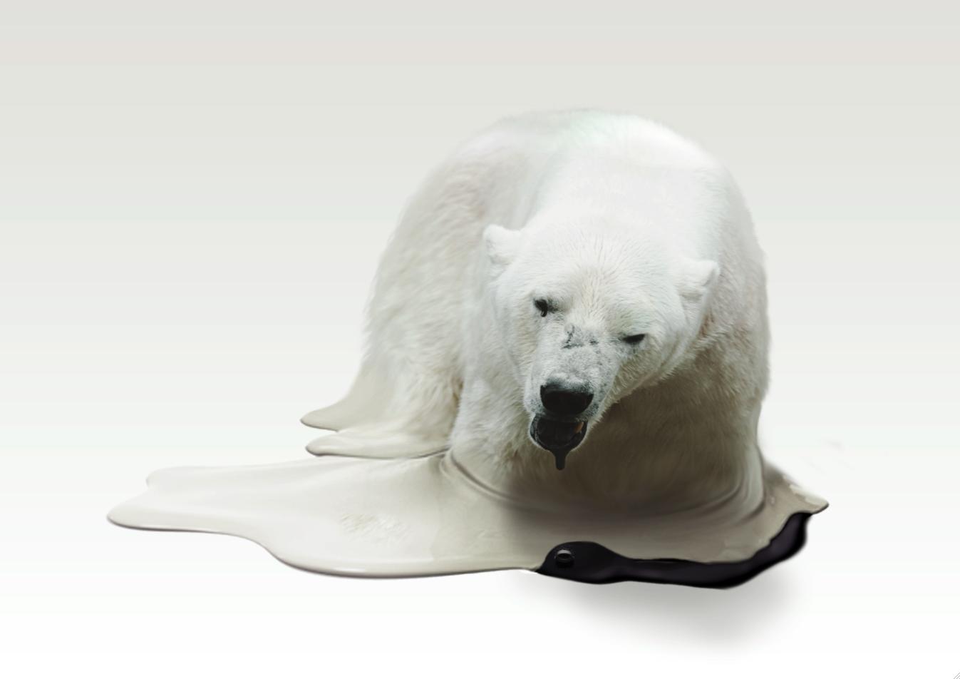 [polar_fin.png]