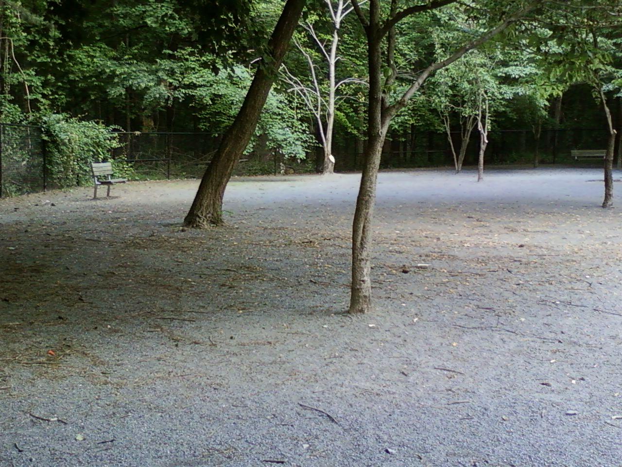Wheaton Regional Dog Park