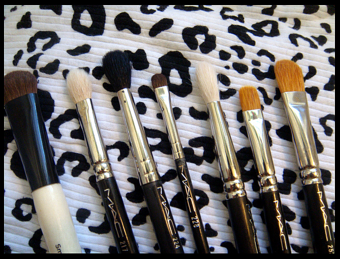 how to use mac 242 brush