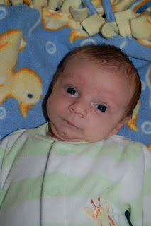One month old and no worse for wear