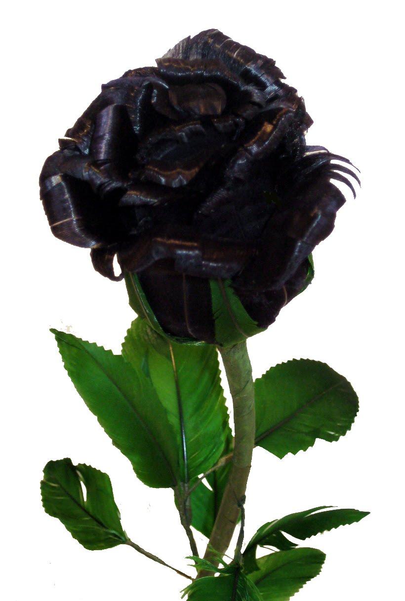 Pokloni nešto forumašu iznad - Page 30 Black_rose_budding