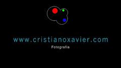 O Grande Artista das Fotografias - Cristiano Xavier