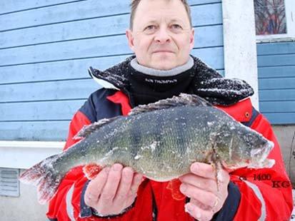 Fiskekompisen Tony