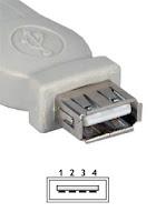 Sta je USB?! Usb-connector-female