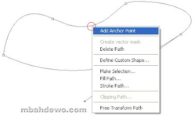 seleksi photoshop pen path 8