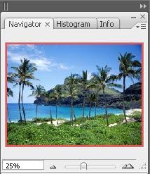 gambar palet navigator photoshop 1