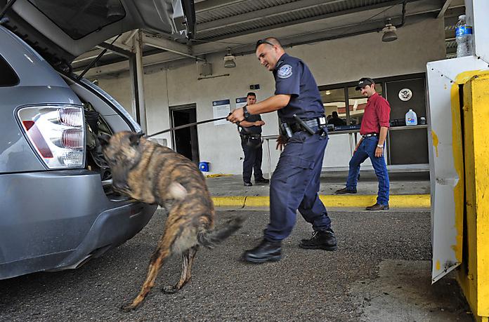 K Dog Training Perth