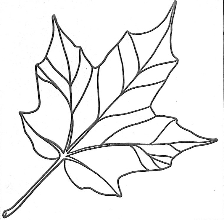 Fall Leaf Template Cut Out http://nittygrittypretty.blogspot.com/2010/09/book-page-leaf-wreath.html