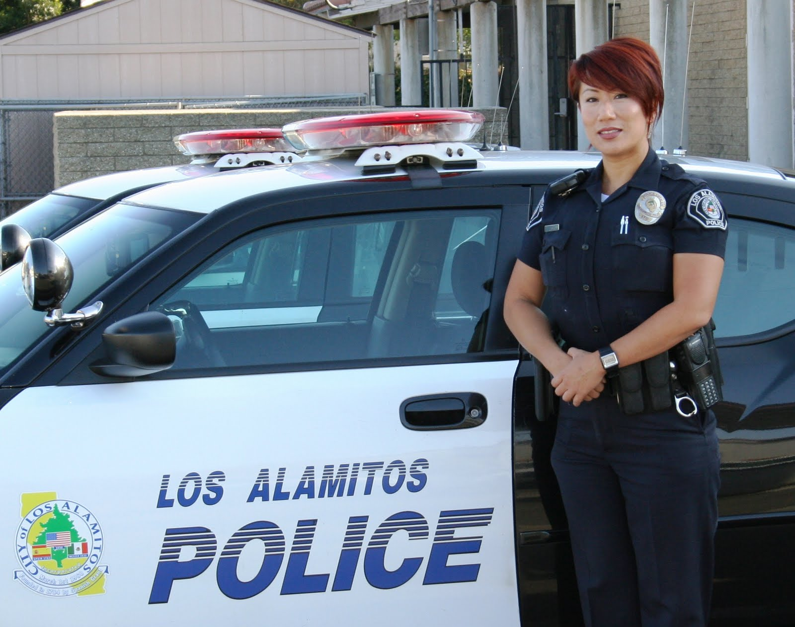 los al pd news november 2010