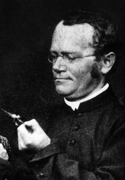 gregor mendel a roman catholic monk Start studying mendels experiments learn vocabulary,  gregor mendel a roman catholic monk.