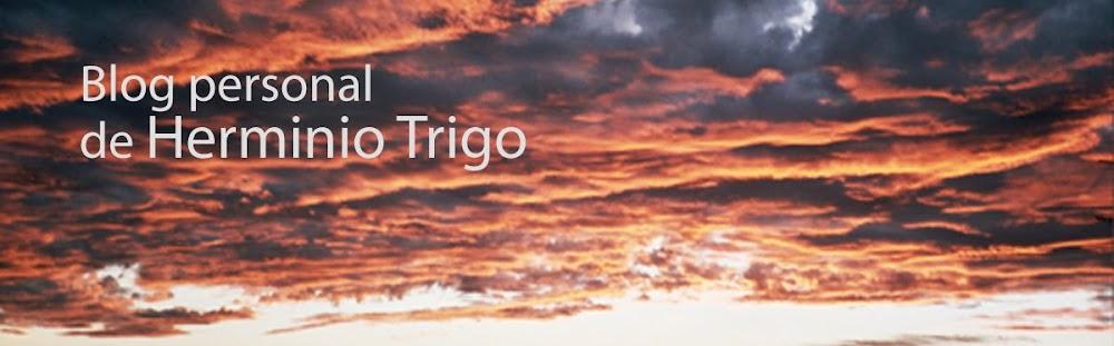 Herminio Trigo