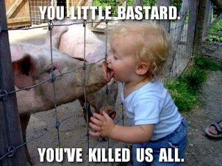 LOLCat sobre gripe suína