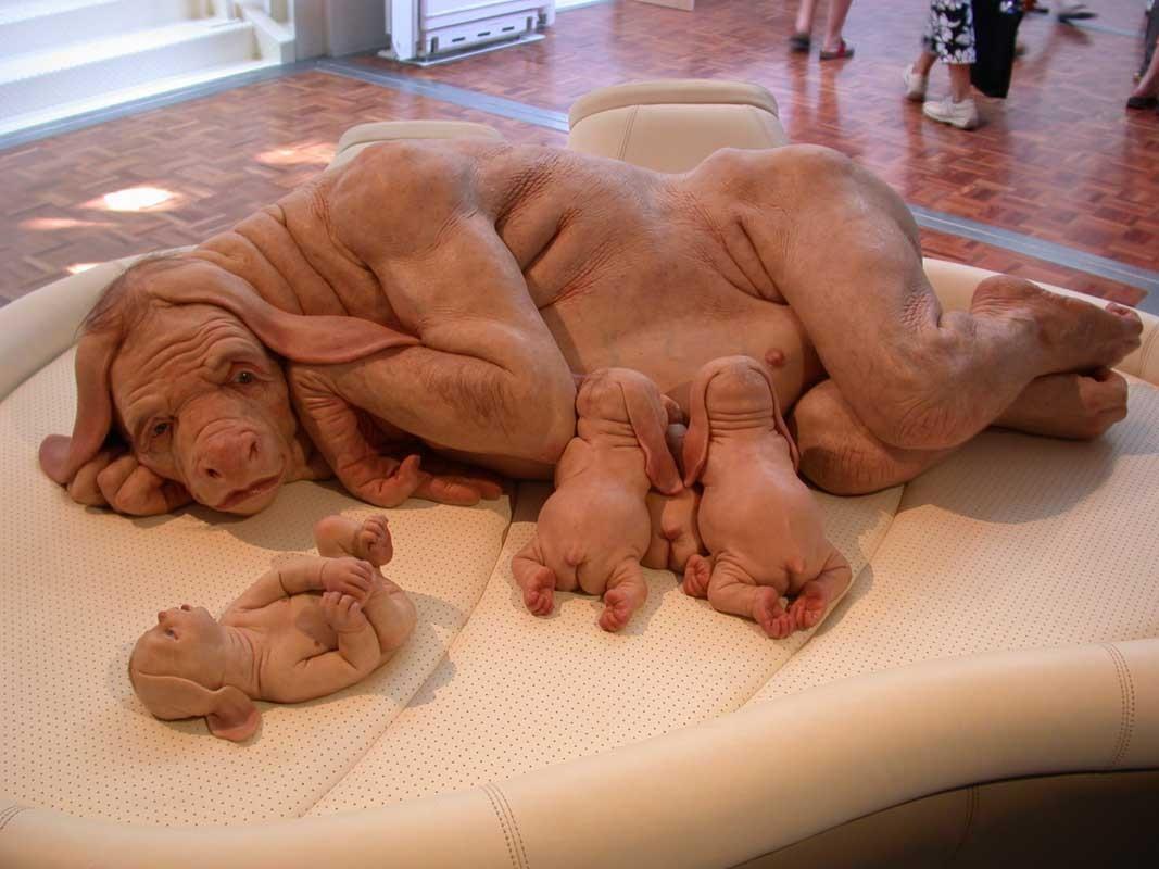 http://3.bp.blogspot.com/_tTBh78Y2bt4/TK6zDUicmBI/AAAAAAAAAEY/JKFMDG-OggA/s1600/hewan%25252Baneh%25252B5.jpg