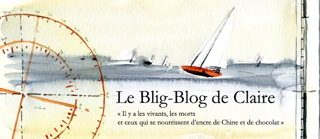 le blig-blog de claire