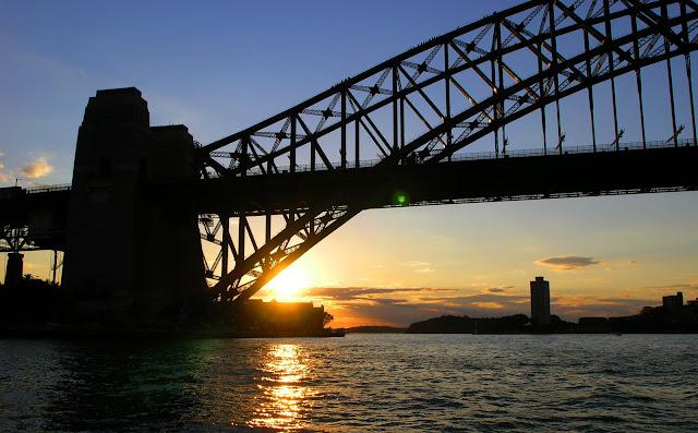 Австралийская Вешалка. Фото