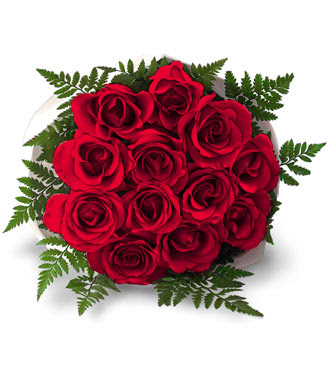 rose flowers bouquet. Red Rose Romantic Bouquet Snap