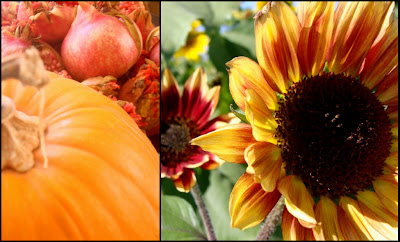 Pumpkins,Pomegranates,Sunflowers,Photography,