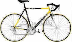 Mike's Bike