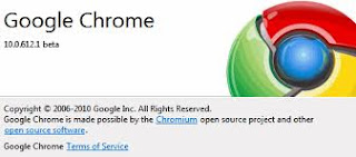 download Google Chrome 10.0.628.0 Beta terbaru gratis maswafa