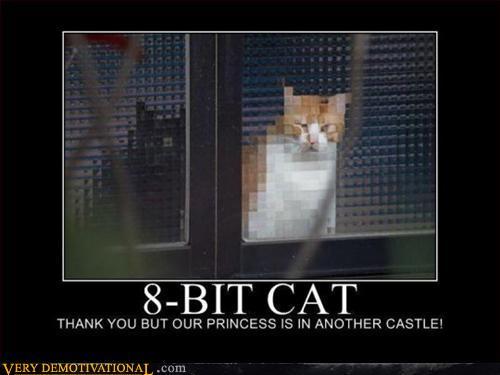 8-Bit Cat
