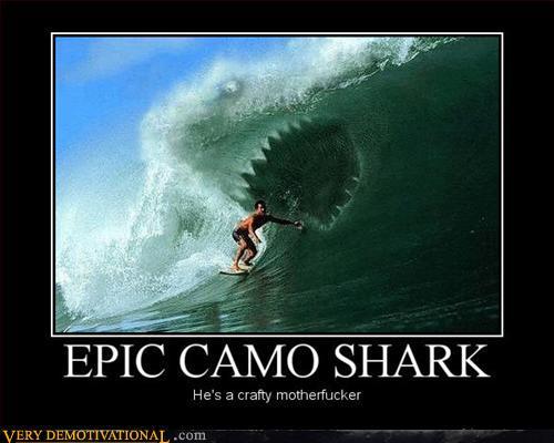 Epic Camo Shark