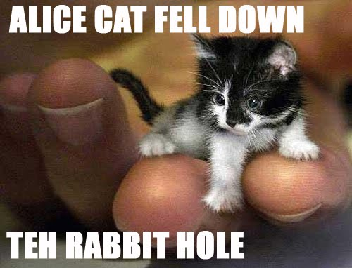 ALICE CAT FELL DOWN TEH RABBIT HOLE