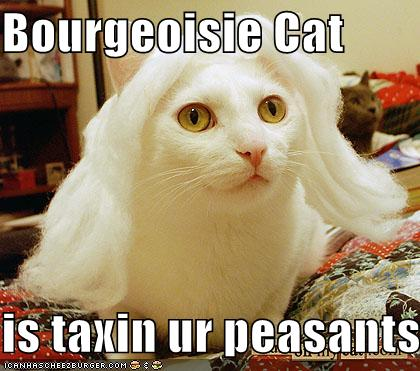 Bourgeoisie cat is taxin ur peasants - lolcats