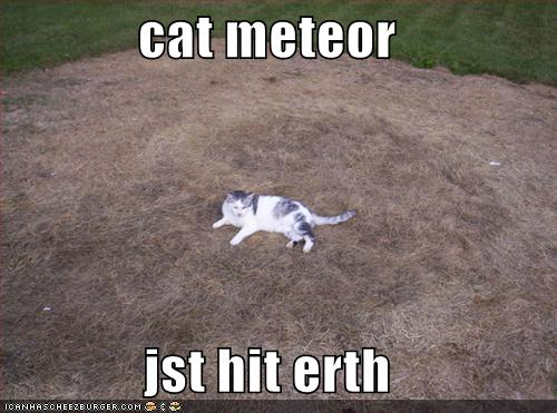 cat meteor jst hit erth